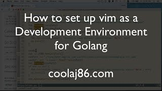 How to set vim up as a development environment for Go