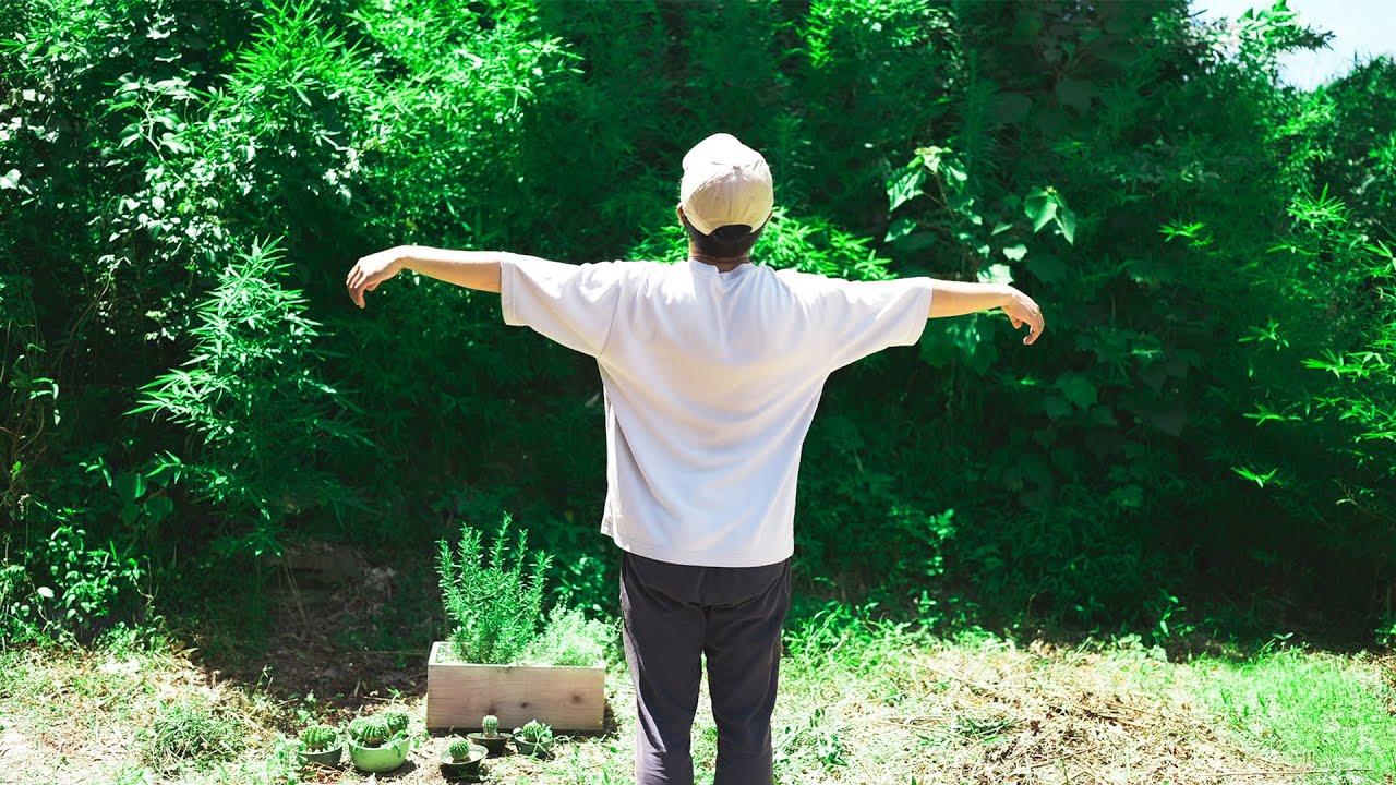 築50年の庭に蚊が大量発生したのでドクダミで虫除けスプレー作りました。#206