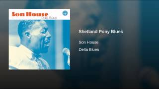 Shetland Pony Blues