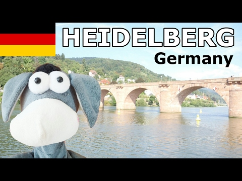 Heidelberg Germany Funny Sightseeing with Dancing Donkey
