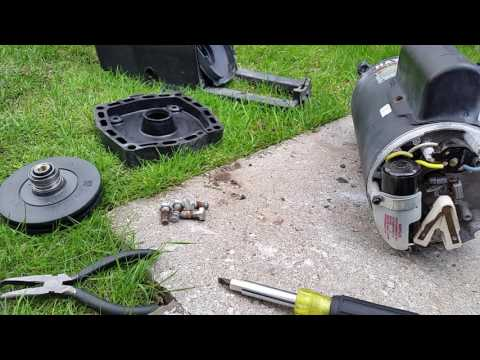 How to Replace a Hayward Pool Pump Motor - Complete Video
