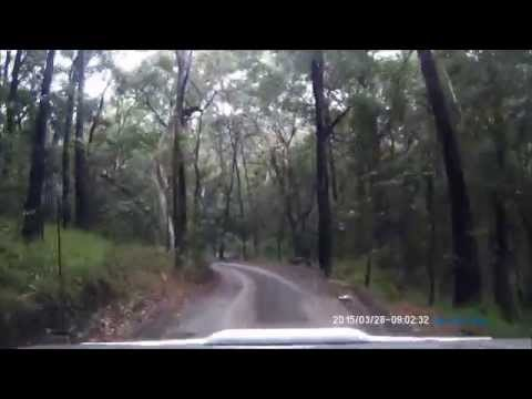 Freshwater Road, Cooloola Recreational Area part 1