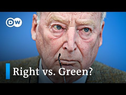 Germany's right-wing AfD declares Greens as main opponents | DW News