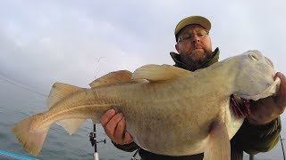 Giant Cod Fishing - Catch and Cook - Fish and Chips