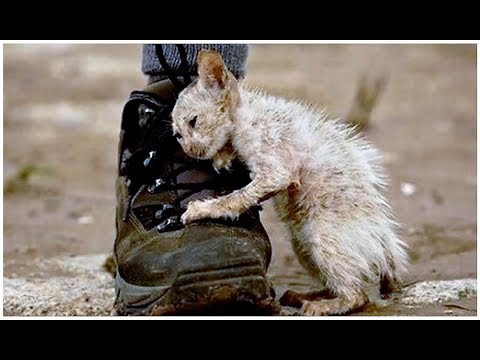 Articles Worth A Second Look - Cover