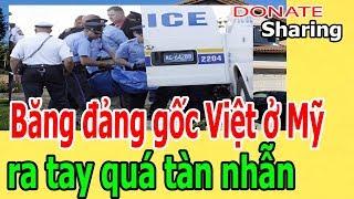 Donate Sharing | B,ă,ng đ,ả,ng g,ố,c Việt ở M,ỹ r,a t,a,y q,u,á t,à,n nh,ẫ,n