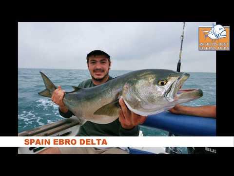 Ebro Delta Spain