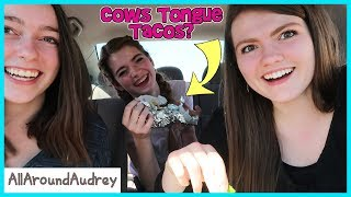 Doing Funny Fan Dares In Public / AllAroundAudrey