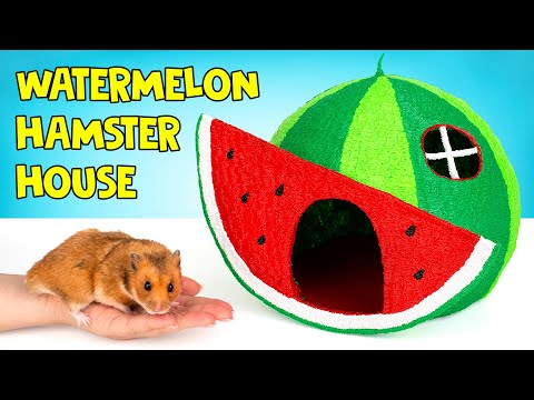 How to Draw A Watermelon House For A Hamster With 3D Pen