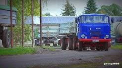 """IFA L60 / W50 """" Die Kartoffelernter vom Nuthe-Urstromtal """""""