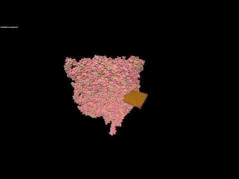 Molecular Dynamics Simulation: Graphene-Polymer Nano-composite