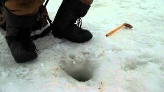 Особливості національної риболовлі в зимовий період