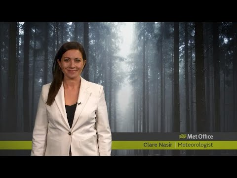 Monday Evening Forecast 18/11/19