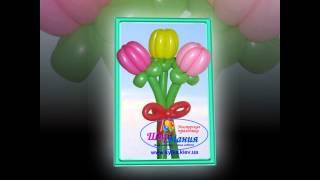 БУКЕТЫ и ЦВЕТЫ из воздушных шариков в Киеве(, 2014-06-19T21:14:38.000Z)
