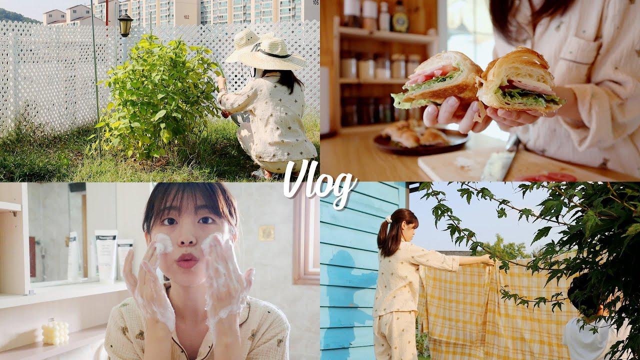 (SUB) 전원주택에서 맞이한 첫 가을VLOG 🍂 환경을 위한 작은 노력을 담은 하루 (feat. 도영X 뉴트로지나 올리브영 소셜마켓)