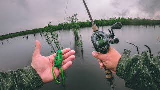 Frog Fishing the Amazon for Incredible Exotic Fish