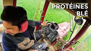 De l'engrais sur toutes les parcelles de blé, 75 hectares dans la journée - 2019