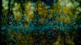 [Chillout] Orion & J.Shore - Nails (Planet Boelex Remix) [Silk Music]