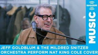 Jeff Goldblum & The Mildred Snitzer Orchestra perform