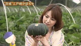 磯山さやかさんが,稲敷市の江戸崎かぼちゃを紹介します。 江戸崎かぼち...