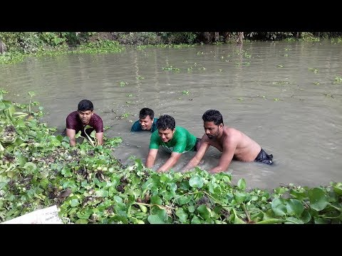 Traditional Net fishing by Hand - They Cast Net and Catch Tiny Fish in Pond - Funny Fishing