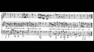 Tornami a vagheggiar (Alcina - Händel) Score Animation