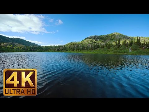 2 Hours Peaceful Lake Views in 4K | Sound of Gentle Lake Waves: Meta Lake at Mt. St. Helens