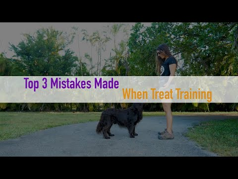 Top 3 Mistakes People Make When Training With Food