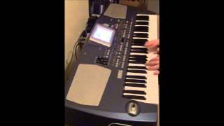 Korg PA500 Synth Bank Demo  Patch  113 Tecno Phonic