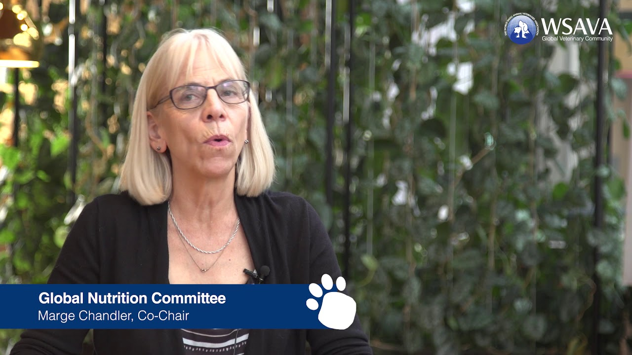 Global Nutrition Committee – WSAVA