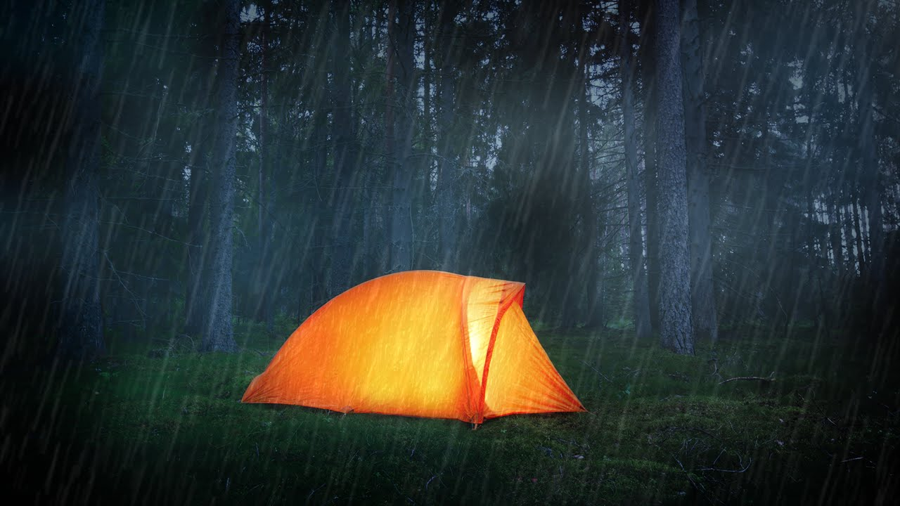 Rain on Tent | Nature Sounds for Sleeping, Studying ...