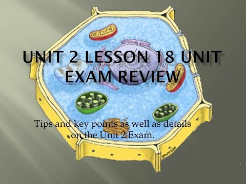 Science 10: Biology Unit Exam Review