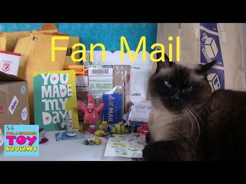 December Cinco De Mailo   Fan Mail Opening Unboxing   PSToyReviews