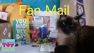 december cinco de mailo   fan mail opening unboxing   pstoyreviews