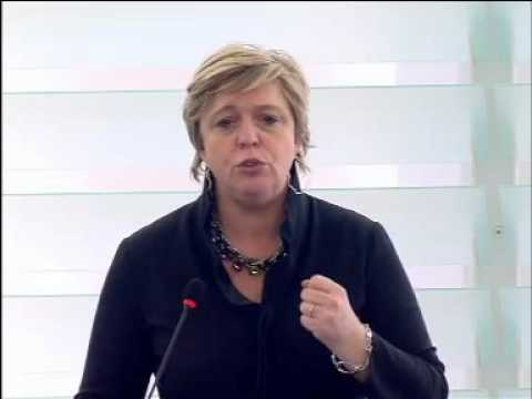 Hilde Vautmans 20 Jan 2016 plenary speech on EU priorities for the UNHRC