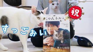うちの猫たちが雑誌デビューします!