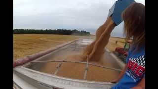 Girl filming her boyfriend unloading wheat from Kinze 1050 grain cart into semi hopper bottom