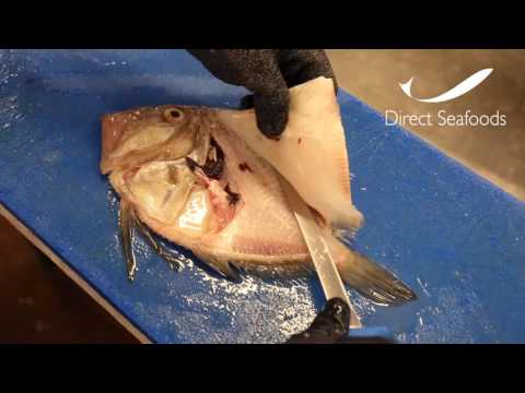 Direct Seafoods: How To Fillet A John Dory