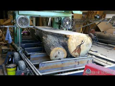 Homemade sawmill cutting  large pecan log 2019 March 18 Broke the saw