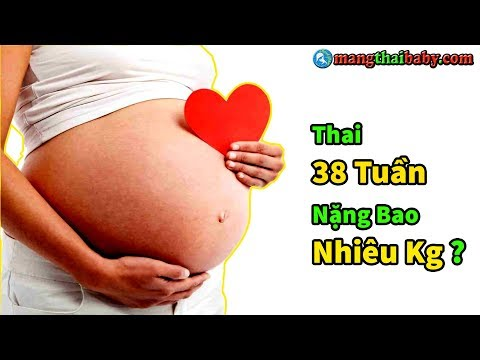 ✅ Giải Đáp Thắc Mắc Thai Nhi 38 Tuần Nặng Bao Nhiêu Kg ? | Tuần 38 Lưu Ý Những Gì ?