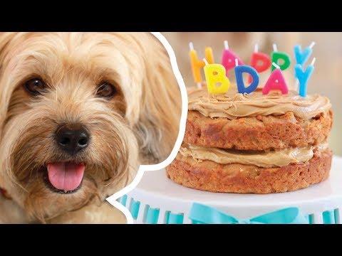 Gemma Makes A Dog Birthday Cake For Waffles | Bigger Bolder Baking
