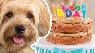 Gemma makes a Dog Birthday Cake for Waffles | Bigger Bolder Baking