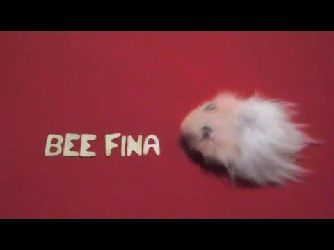 Cute Hamster writing Bee Finance Savvy!