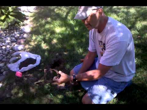 How to eliminate moles from your yard. - YouTube