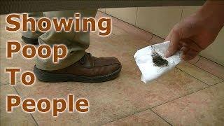 Showing People Poop In Public Restrooms