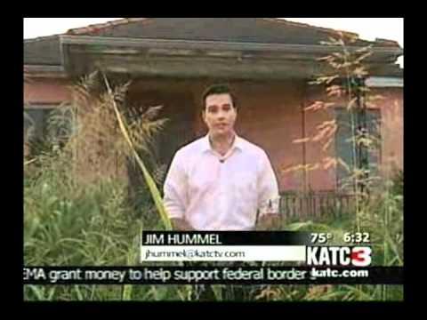 Jim Hummel Anchor/Reporter Montage