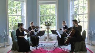 Kiss From A Rose (Seal) Wedding String Quartet