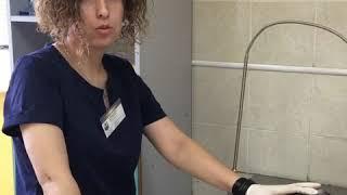 Техника подкожной инъекции кошке