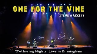Steve Hackett - One For The Vine (Wuthering Night)