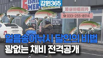 얼음송어낚시 절대 꽝 없는 채비와 비법 공개.송어가 알아서 물어준다!! (feat.피싱아메리카)